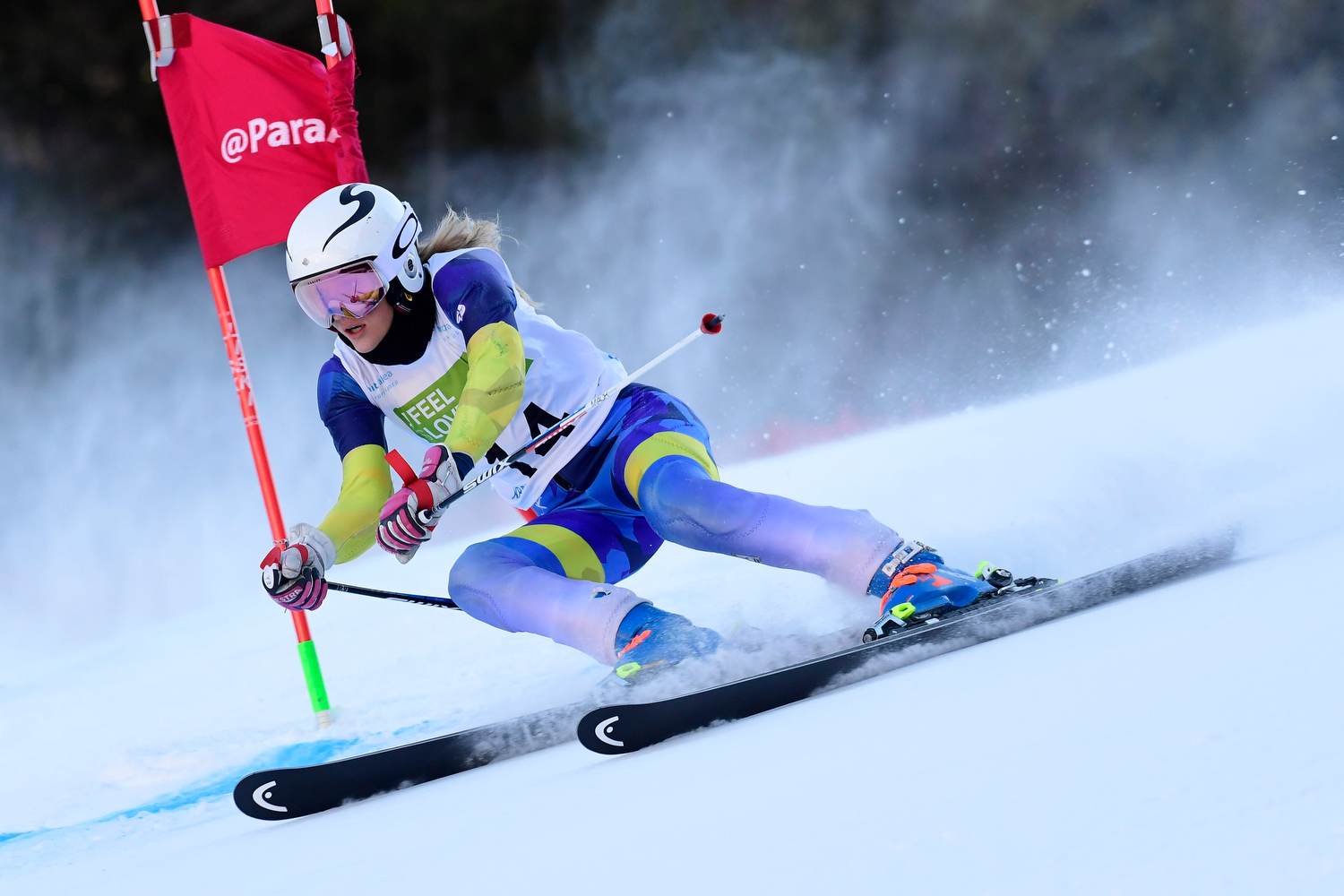 Alpine Skiing: What does it consist of? How many disciplines does it have?